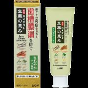 LION Hitect Seiyaku, Лечебная зубная паста с натуральными травами с нежным ароматом 90 гр