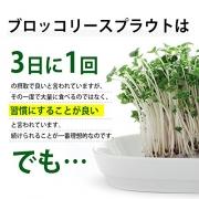 Ogaland Broccoli Sprout, Экстракт проростков брокколи на 30 дней