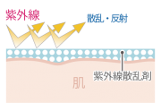 LNC UV Protector, Крем для профилактики фотостарения SPF50+ PA++++